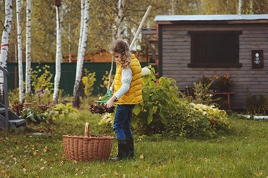 child girl playing little gardener in autumn and picking leaves
